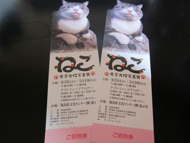 岩合光昭写真展「ねこ」in福島 読者サポーターネコ日和倶楽部発会式に参加してきました!