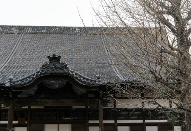 中尊寺金色堂へ!アクセス方法は仙台からだと車とバス便利なのは?