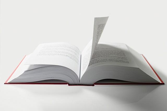 知識と知恵の違いは?そして見識を広げるための3つの方法!