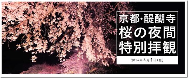 京都・醍醐寺の2016年桜の見頃はいつごろ