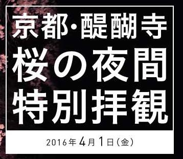 醍醐寺夜間特別拝観!桜の見ごろは2016年のいつごろ?