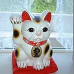 豪徳寺に伝わる2つの招き猫伝説!挙げてる手と毛色でご利益がちう?