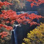 袋田の滝の紅葉2016!見頃と見逃せない観光スポット3選も!