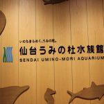 仙台うみの杜水族館の混雑状況は?混雑を避けられる時間と時期はいつ頃?